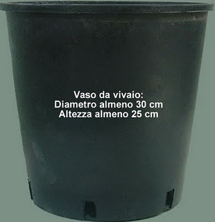 Vasi Neri In Plastica.Orto Sul Terrazzo